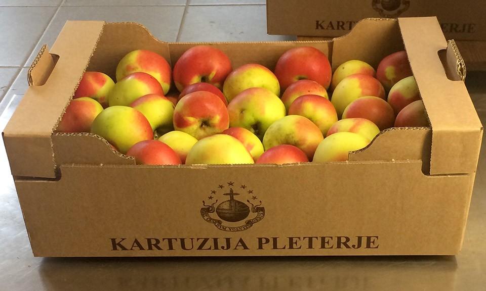 Ekološko pridelana jabolka sorte Carjevič 9 kg