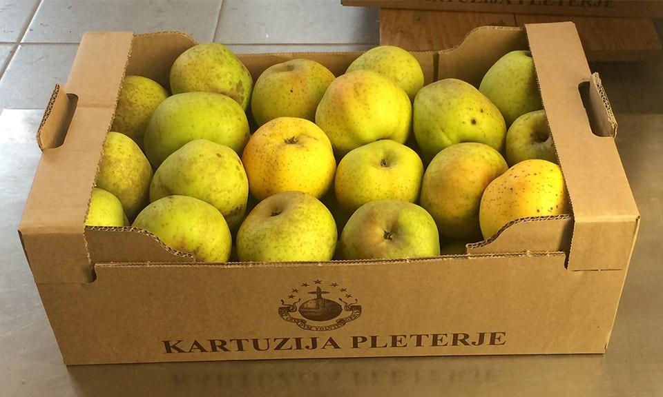 Ekološko pridelana jabolka sorte Kanada 9 kg
