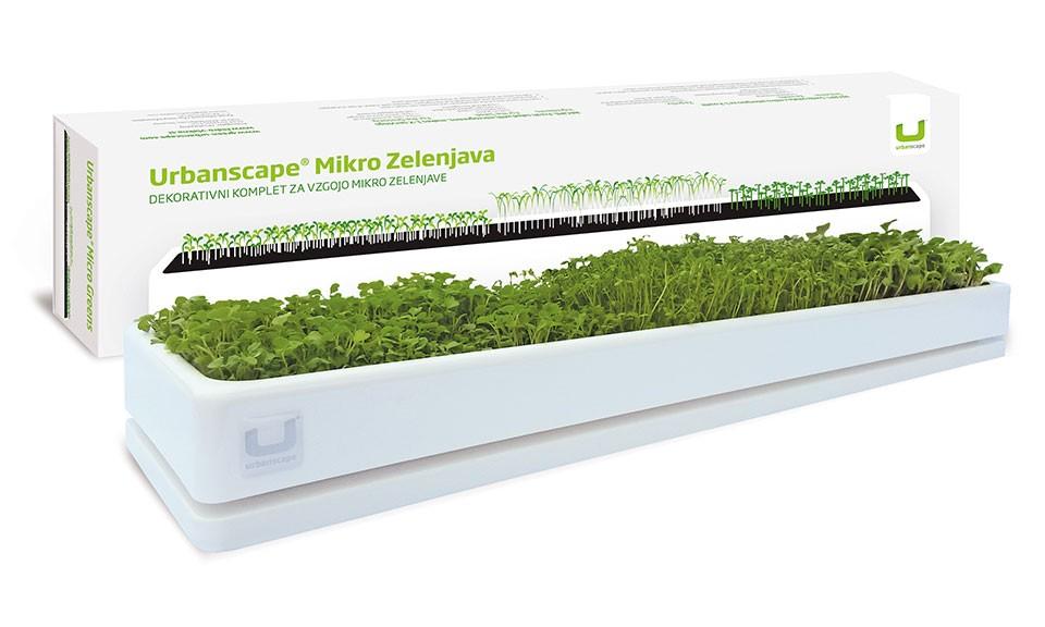 Set za vzgojo mikro zelenjave z lesenim podstavkom v beli barvi