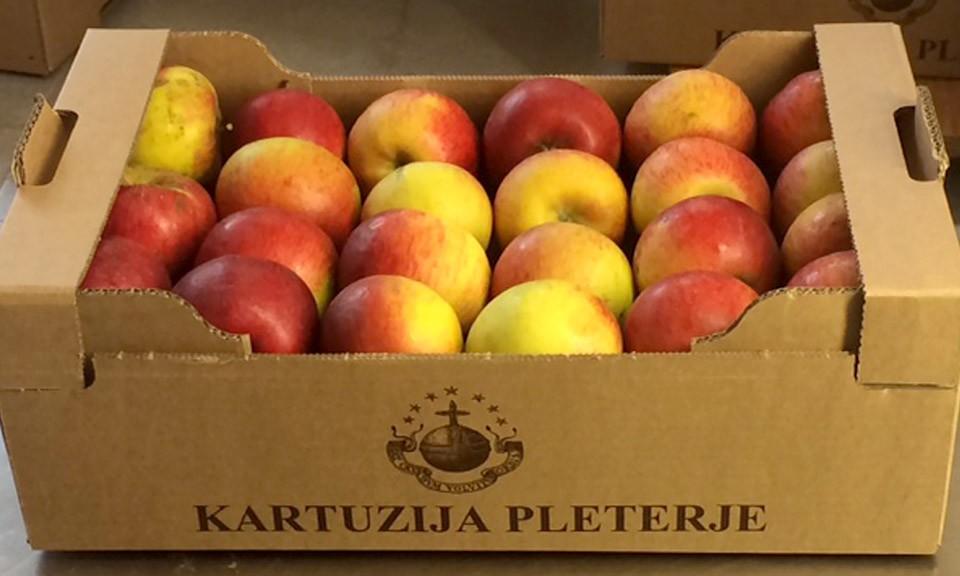Ekološko pridelana jabolka sorte Topaz 9 kg