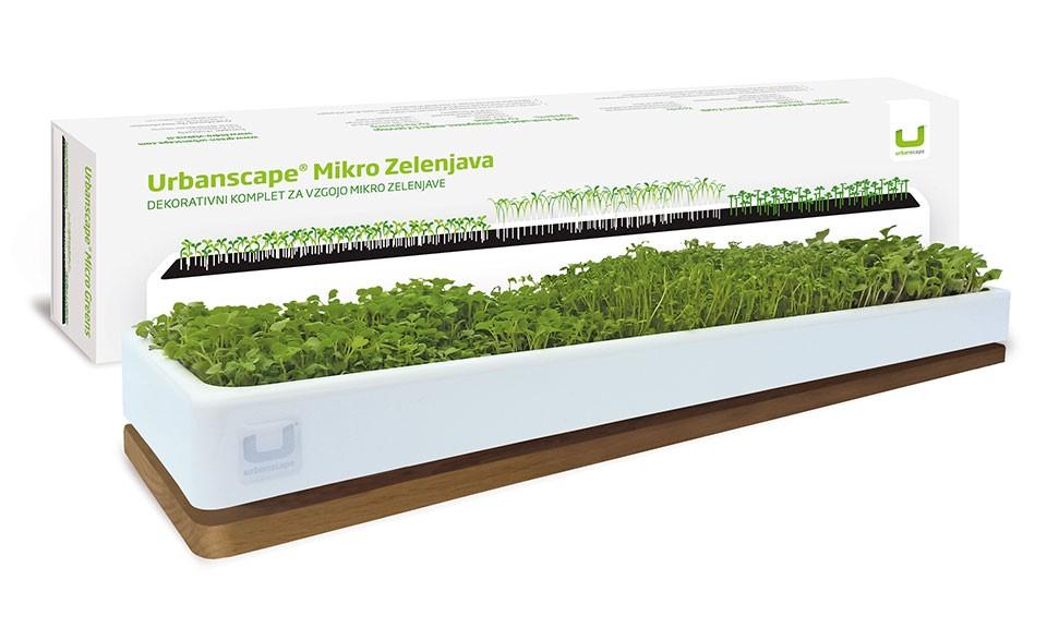 Set za vzgojo Mikro zelenjave - s hrastovim podstavkom