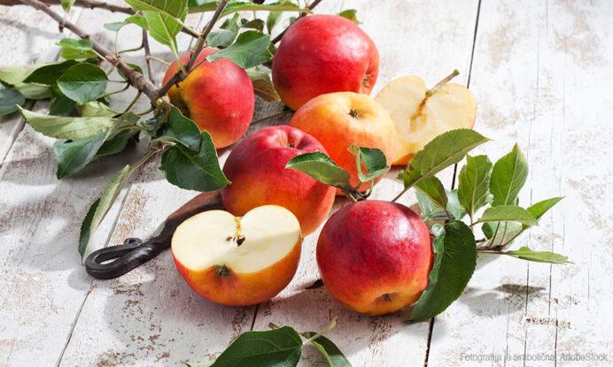 jabolko sadika